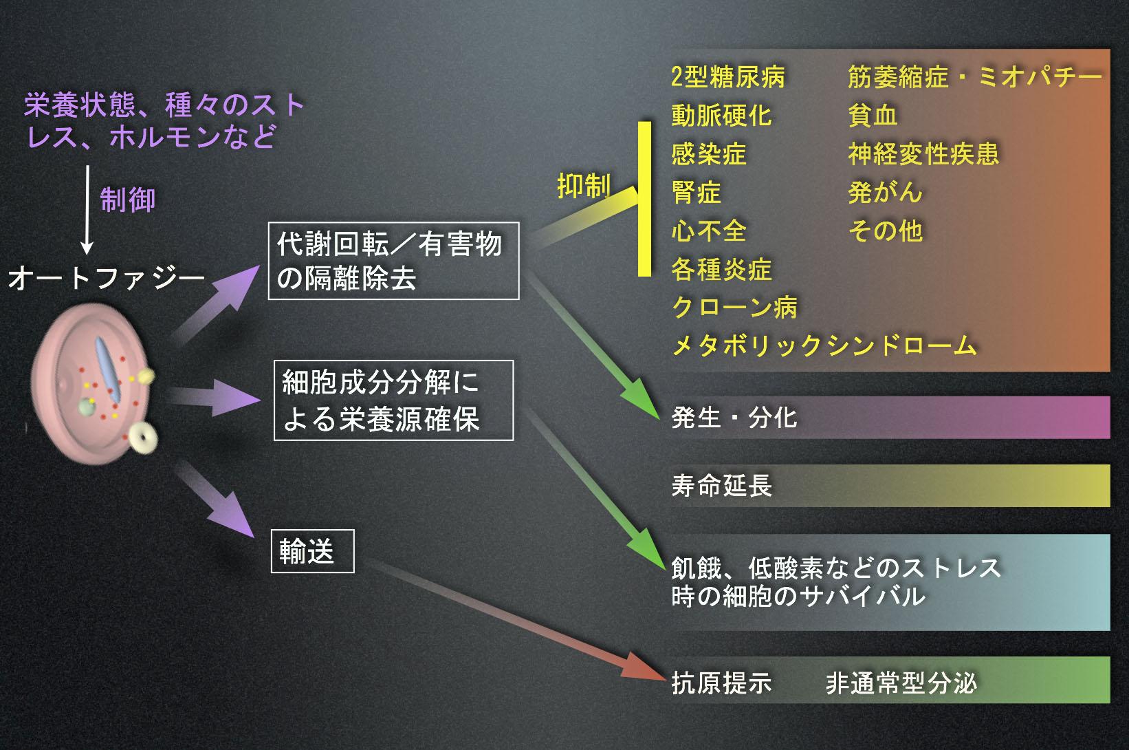 Fig5_Diseasesnew.jpg
